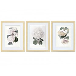 "Set posters ""Botanical flowers"""