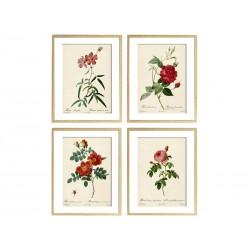"Set posters ""Botanical flowers"""