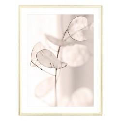 """Framed Poster """"Flower"""""""