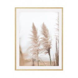 "Framed Poster ""Herb"""