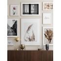 """Set of frames """"Paris"""" color to choose"""