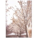 """Poster """"Blooming tree"""""""