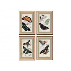 """Set posters """"Butterflies"""""""